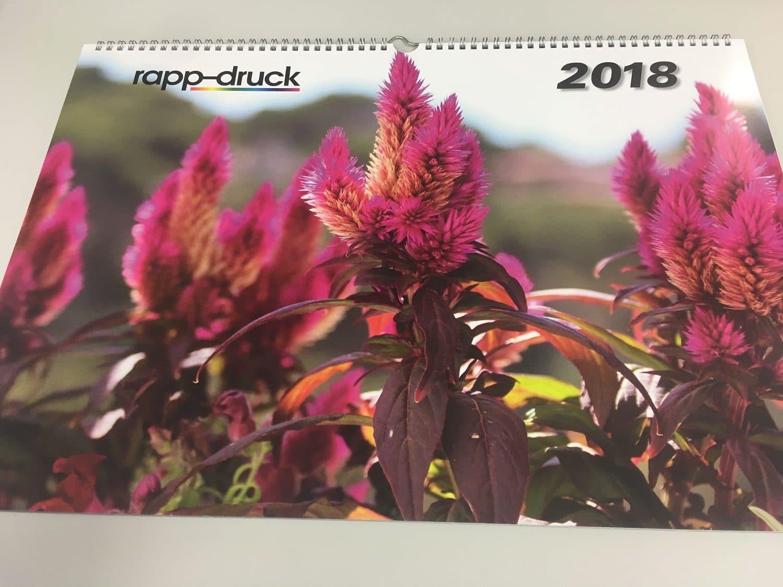 Titelblatt des Rapp-Druck Fotokalenders für 2018