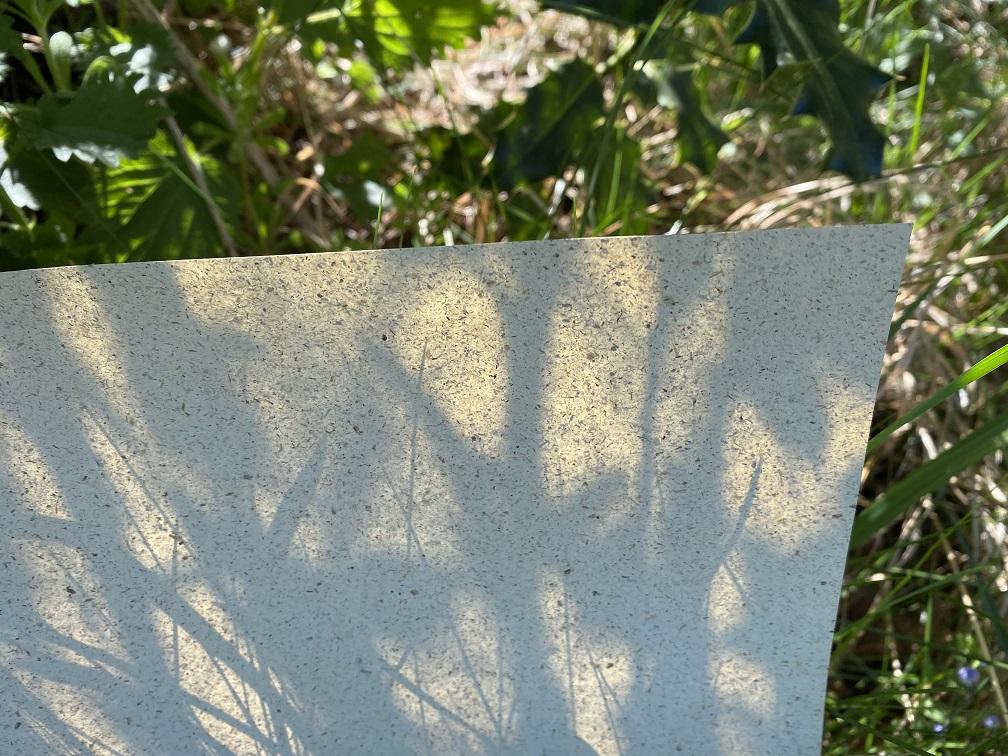 VIVUS Grass Paper von Berberich in 90 g/m²